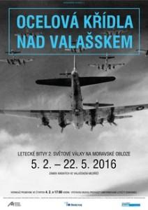 ocelova-kridla-nad-valasskem-2016-01-26_invitationw6h12