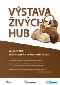 plakat-vystava-zivych-hub-2016-2016